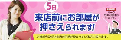 kari_main2015.jpg